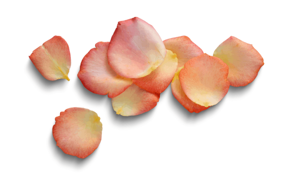 Petals added to bath bombs when used in the bath can be problematic on thier own, used in a hot tub they can be catastrophic.
